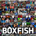 Boxfish TV Guide