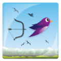 Hunt Birds With Arrow & Bow