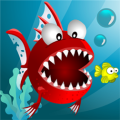 Fish Adventures