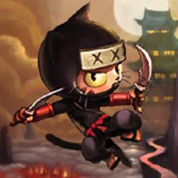 NinjaCat Bombay (1)