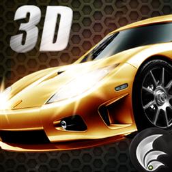 Crazy Racer 3D (1)
