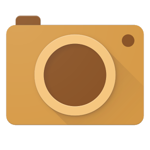 Cardboard Camera (1)